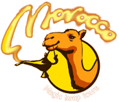 Welcome to Magic Lamp Tours