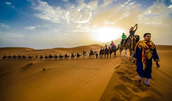 Camel trekking and Bivouac