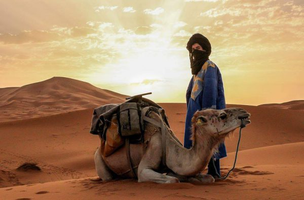 Lawrence of Arabia Tour