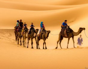 The Cleopatra Tours From Marrakech