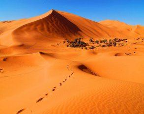 The Sahara Desert Tours From Marrakech